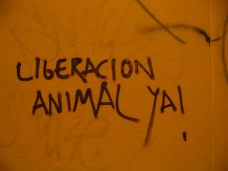 Animal liberation / Photo: ThinkVegan/flickr