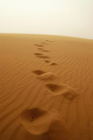 photo: Emanuele / real desert storm  / fotosensibile 2.0