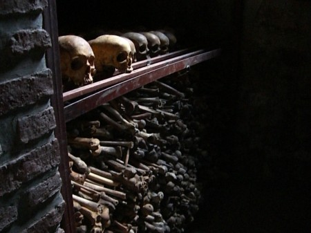 hundreds of skulls and bones on a shelf